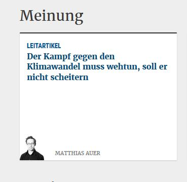 Screenshot von diePresse.com